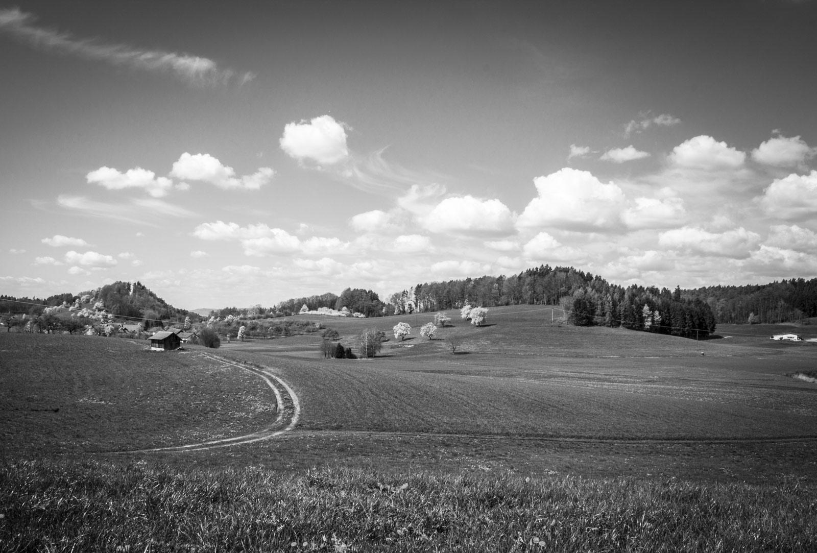 hinterland foto